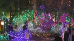 High angle - intersection vandusen festival of lights Stock Footage