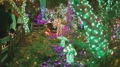 Christmas garden -  neon mushrooms and crowd walking Stock Footage