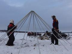 Assembling a Saami tent Stock Footage