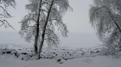 shore of a frozen reservoir harsh Russian winter, rocks and trees in the snow - stock footage