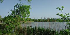 National nature reserve Polanecká Niva Stock Photos