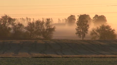 Sunrise and summer end autumn time fields Stock Footage