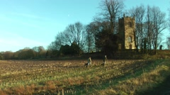 Country countryside Church dog walkers Stock Footage