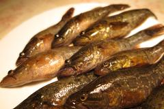 Freshly caught Chinese sleepers (Perccottus glenii) on a plate Stock Photos