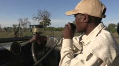 Safari guide speaking on radio while driving through african bush Stock Footage