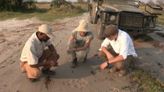 Tourists and safari guide looking at animal tracks Stock Footage