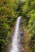 Hola Vida waterfall - stock photo