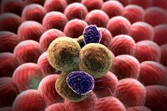 cancer cell, Lymphocytes - stock illustration