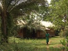Men in somalomo reserve Stock Footage