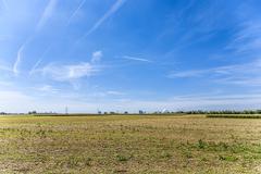acres after harvest under blue sky - stock photo