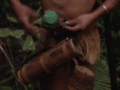 Punan preparing his blowgun Stock Footage
