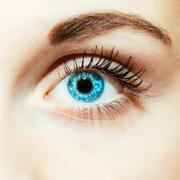 Bright Blue Eye Close Up Stock Photos