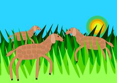 Sheeps in grass Stock Illustration