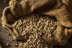 Raw Dry Organic Buckwheat - stock photo
