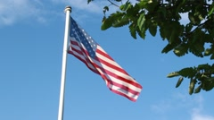 American Flag waving over blue sky with tree in foreground Stock Footage