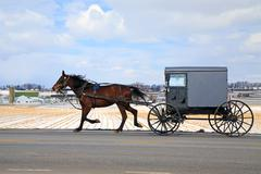 Amish Carriage in Winter Stock Photos