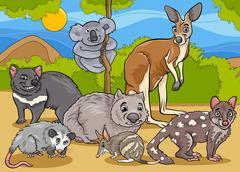 marsupials animals cartoon illustration - stock illustration
