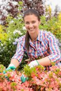 Smiling florist arranging flowers in garden center Stock Photos