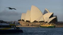 Australia Sydney opera house and boats zoom 4k Stock Footage