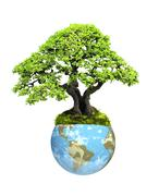Earth and tree - stock photo