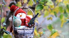 Feeding birds outside, winter, fodder in a basket with a winter doll Stock Footage