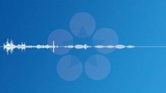 Coins-24 Sound Effect