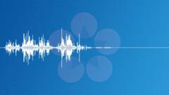 Coins-22 Sound Effect
