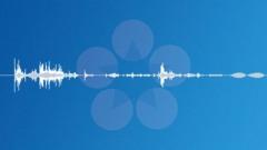 Coins-27 Sound Effect