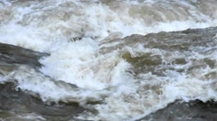 River with high water and heron Stock Footage