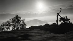 Early morning in sandstone rocks, sunrise. Saxon Switzerland. - stock photo