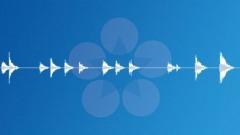 Floor creaking slow-01 Sound Effect