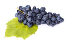 Single blue grape cluster on leaf - stock photo