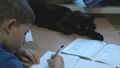 Boy does his homework and the cat is watching Stock Footage