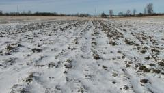 Uncultivated fields in organic farm in winter Stock Footage