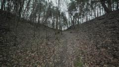 Following a path inside of a gloomy ravine. Flycam - stock footage