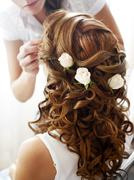 Hairdress of the bride Stock Photos
