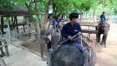 Mahouts - people who works with, rides, and tends an elephants Stock Footage