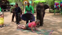People at the show of elephants in Thailand Stock Footage