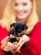 Woman embrancing her puppy dog Stock Photos