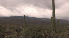 4K UHD gloomy winter clouds hang on mountain saguaro cactus time lapse medium Stock Footage