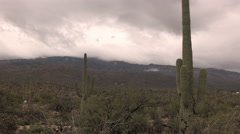 4K UHD gloomy winter clouds hang on mountain saguaro cactus real time medium Stock Footage