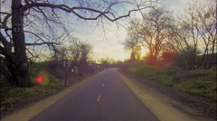 Road between trees near the lake Stock Footage