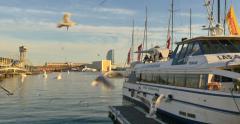 Port Vell harbor in Barcelona city, Spain sunset ship boat pan birds seagulls Stock Footage