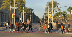 BARCELONA, SPAIN: Passeig de Colom is the name of a wide avenue Stock Footage