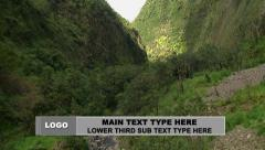 Business Line Lower Third Pack Stock After Effects