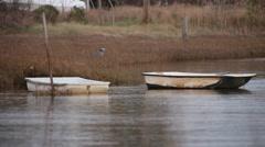 Skiff floats in estuary Stock Footage