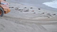 Loader on beach Stock Footage