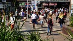 Australia Sydney People walking past plants time lapse 4k Stock Footage