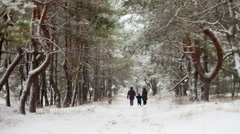 Family walking through snowy woods Stock Footage