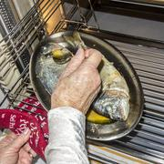 cooking fish in oven at home kitchen - stock photo